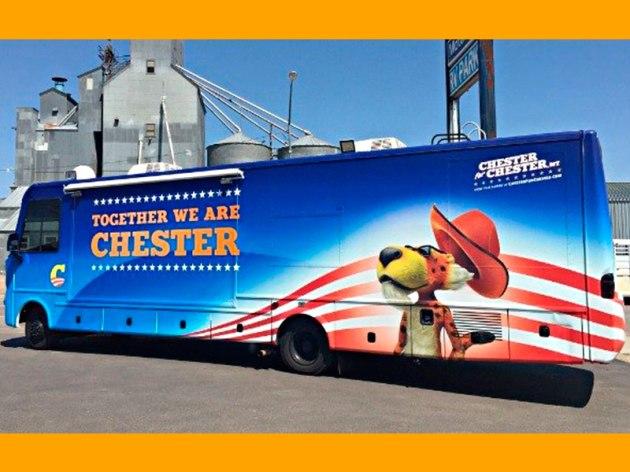 Chester Cheetos - O Candidato 'Fanfarrão' das Eleições Americanas